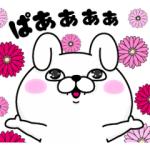 【LINE無料スタンプ速報】うさぎ100%×ViSコラボスタンプ(2018年04月23日まで)