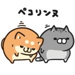 【LINE無料スタンプ速報】ボンレス犬&猫×ライブドアニュース スタンプ(2019年07月24日まで)