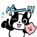【LINE無料スタンプ速報:隠し】バフェとPIGの毎日がエブリデイ スタンプ(2019年12月25日まで)