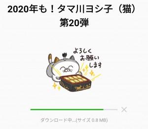 【限定無料スタンプ】2020年も!タマ川ヨシ子(猫)第20弾 スタンプのダウンロード方法とゲットしたあとの使いどころ (2)