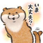 【LINE無料スタンプ速報】可愛い嘘のカワウソ 【お話きっかけ編】 スタンプ(2020年07月06日まで)
