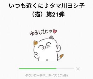 【限定無料スタンプ】いつも近くに♪タマ川ヨシ子(猫)第21弾 スタンプのダウンロード方法とゲットしたあとの使いどころ (2)