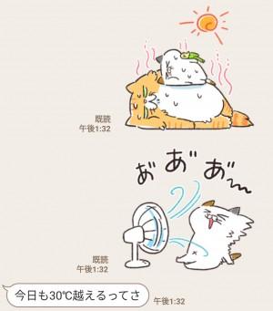 【限定無料スタンプ】夏だ!海だ!タマ川ヨシ子(猫)第22弾 スタンプのダウンロード方法とゲットしたあとの使いどころ (4)
