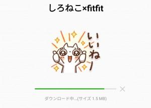 【限定無料スタンプ】しろねこ×fitfit スタンプのダウンロード方法とゲットしたあとの使いどころ (2)