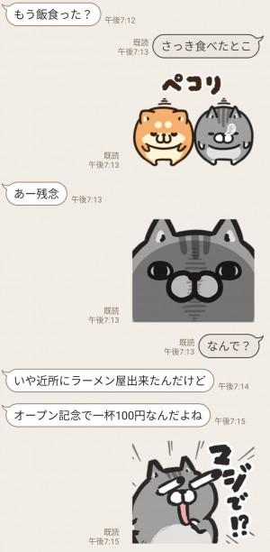 【限定無料スタンプ】タイムラインで使える★ボンレス犬と猫 スタンプのダウンロード方法とゲットしたあとの使いどころ (4)