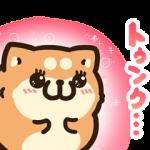 【限定無料スタンプ】タイムラインで使える★ボンレス犬と猫 スタンプのダウンロード方法とゲットしたあとの使いどころ